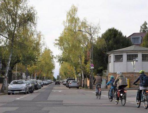 Landau: Eichbornstraße – Verwaltung prüft Möglichkeiten der Verkehrsberuhigung