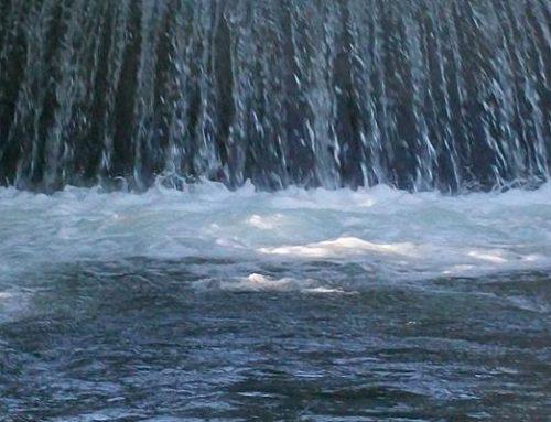 Neckargerach / Zwingenberg: Land beteiligt sich an Zusammenlegung der Wasserversorgung