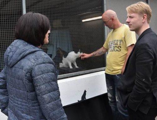 Mehr Geld für Tierheim in Landau