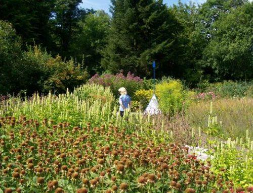 Speyer: Bewerbung für die Landesgartenschau 2026 schreitet voran