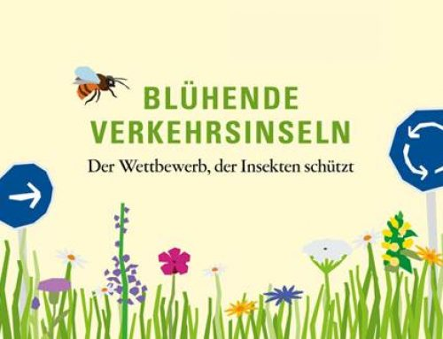 Baden-Württemberg: Blühende Oasen am Straßenrand