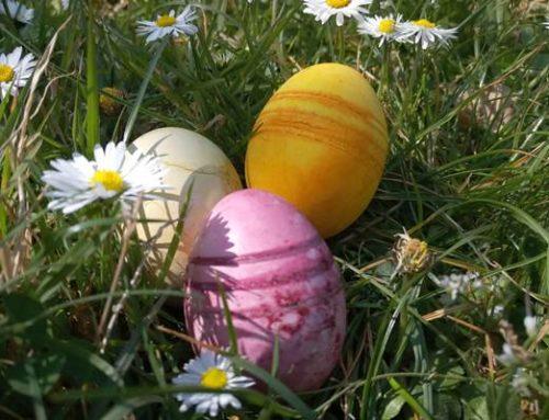 Umwelt-Tipp: Ostereier natürlich färben