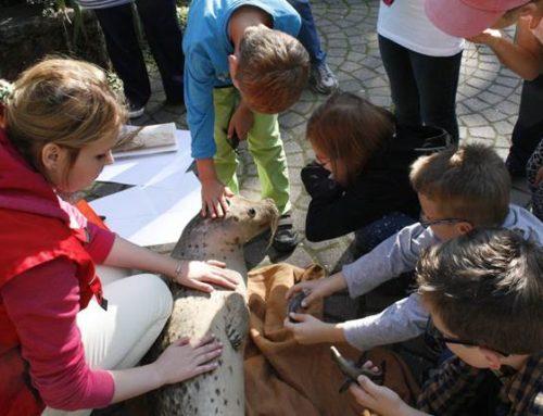Bildungspaten für die Zooschule Landau gesucht!