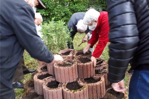 ecoGuide, Heidelberg, AWO Heidelberg, AWO blüht auf-Aktion, Artenvielfalt