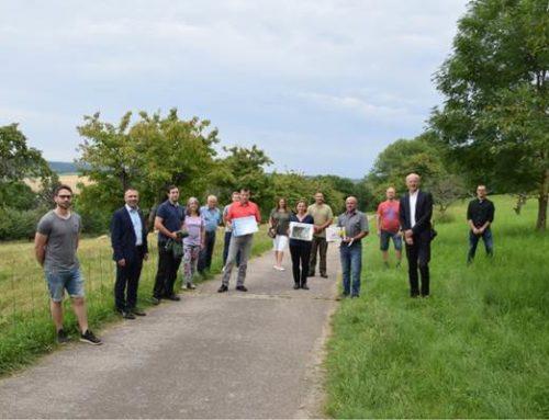 Sinsheim: Anerkennung für das Beweidungsprojekt am Steinsberg