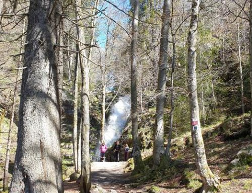 Wandern in Hessens vielfältiger Natur