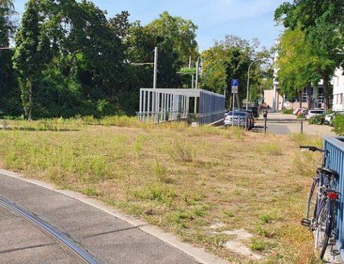 Mannheim: Neue Klimastation in der Schlossgartenstraße