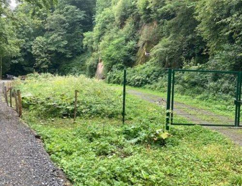 Heidelberg: Wanderweg am Steinbruch Gumpental verlegt