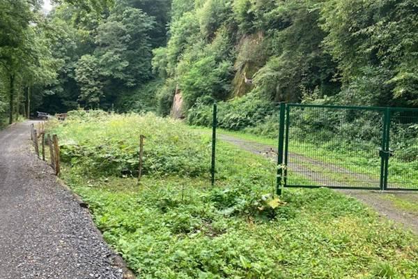 ecoGuide, Steinschlag, Heidelberg, Wandern