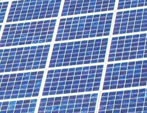 RLP: Leitfaden für naturverträgliche und biodiversitätsfördernde Solarparks veröffentlicht