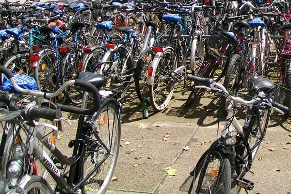 ecoGuide, Hockenheim, Bike+Ride-Anlage, Radfahren
