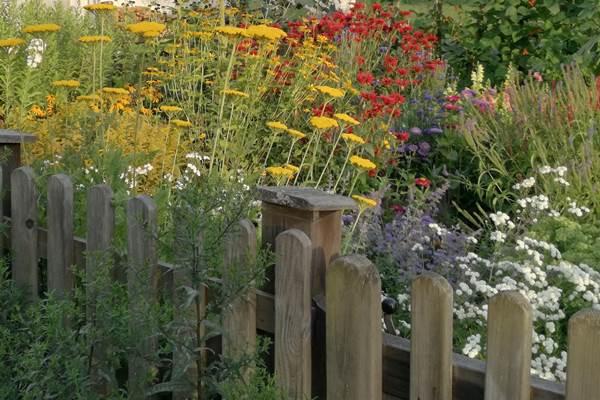ecoGuide, Hockenheim, Gartengestaltung, Naturgarten